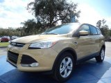2014 Karat Gold Ford Escape SE 1.6L EcoBoost #90930566