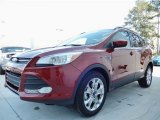 2014 Sunset Ford Escape SE 1.6L EcoBoost #90930555