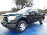 2014 Green Gem Ford F150 XL Regular Cab #90930572
