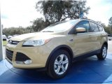 2014 Karat Gold Ford Escape S #90930570