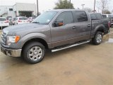 2014 Sterling Grey Ford F150 XLT SuperCrew #90960366