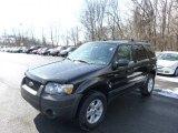 2006 Black Ford Escape XLT V6 4WD #90960531