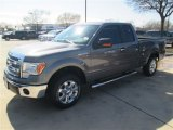 2014 Sterling Grey Ford F150 XLT SuperCab #91005528