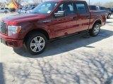 2014 Sunset Ford F150 STX SuperCrew #91005521