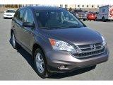 2010 Urban Titanium Metallic Honda CR-V EX #91005982