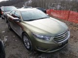 2013 Ginger Ale Metallic Ford Taurus Limited #91047775