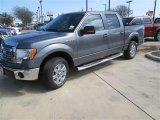 2014 Sterling Grey Ford F150 XLT SuperCrew #91047796