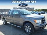 2014 Sterling Grey Ford F150 STX SuperCab 4x4 #91047859