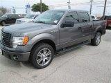 2014 Sterling Grey Ford F150 STX SuperCrew #91092025