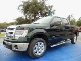 2014 Green Gem Ford F150 XLT SuperCrew #91129322