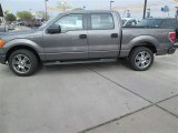 2014 Sterling Grey Ford F150 STX SuperCrew #91129239