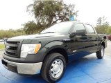 2013 Ford F150 XL SuperCrew