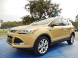 2014 Karat Gold Ford Escape Titanium 2.0L EcoBoost #91129342