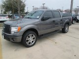 2014 Sterling Grey Ford F150 STX SuperCrew #91129245
