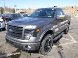 2014 Ford F150 FX4 Tremor Regular Cab 4x4 Data, Info and Specs