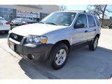 2006 Silver Metallic Ford Escape XLT V6 #91214304