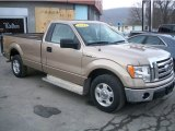 2012 Pale Adobe Metallic Ford F150 XLT Regular Cab #91285901