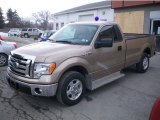 2012 Ford F150 XLT Regular Cab Data, Info and Specs