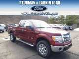 2014 Sunset Ford F150 XLT SuperCab 4x4 #91318869