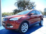 2014 Sunset Ford Escape Titanium 2.0L EcoBoost #91407972