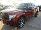 2014 Sunset Ford F150 STX SuperCrew 4x4 #91449040