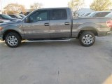 2014 Sterling Grey Ford F150 XLT SuperCrew #91449039