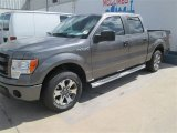 2014 Sterling Grey Ford F150 STX SuperCrew #91493781