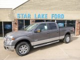 2014 Sterling Grey Ford F150 XLT SuperCrew 4x4 #91518426