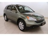 2009 Green Tea Metallic Honda CR-V EX-L 4WD #91559163