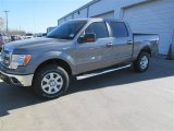 2014 Sterling Grey Ford F150 XLT SuperCrew 4x4 #91598720