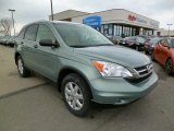 2011 Opal Sage Metallic Honda CR-V SE 4WD #91643537