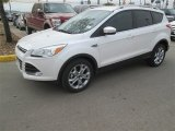 2014 White Platinum Ford Escape Titanium 1.6L EcoBoost #91642828