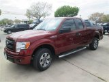 2014 Sunset Ford F150 STX SuperCab #91642801