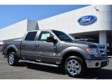 2014 Sterling Grey Ford F150 XLT SuperCrew #91704140
