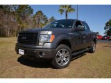 2014 Sterling Grey Ford F150 STX SuperCrew 4x4 #91754862