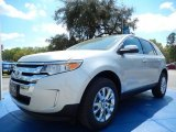 2014 Ingot Silver Ford Edge Limited #91754736