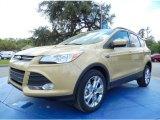 2014 Karat Gold Ford Escape SE 2.0L EcoBoost #91754733