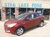 2014 Sunset Ford Escape SE 1.6L EcoBoost 4WD #91776884
