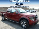 2014 Sunset Ford F150 FX4 SuperCrew 4x4 #91811042