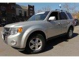 2009 Brilliant Silver Metallic Ford Escape Limited #91811222