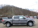 2014 Sterling Grey Ford F150 XLT SuperCrew 4x4 #91851544