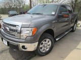 2014 Sterling Grey Ford F150 XLT SuperCrew 4x4 #91851435