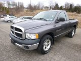 2004 Dodge Ram 1500 Graphite Metallic