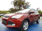 2014 Sunset Ford Escape SE 2.0L EcoBoost #91942815