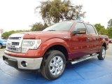 2014 Sunset Ford F150 XLT SuperCrew #91942800
