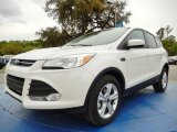 2014 White Platinum Ford Escape SE 1.6L EcoBoost #91942799