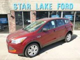 2014 Sunset Ford Escape S #92008692