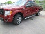 2014 Sunset Ford F150 STX SuperCab #92038539