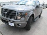 2014 Sterling Grey Ford F150 FX2 Tremor Regular Cab #92038538