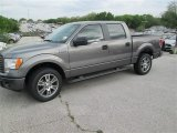 2014 Sterling Grey Ford F150 STX SuperCrew #92088722